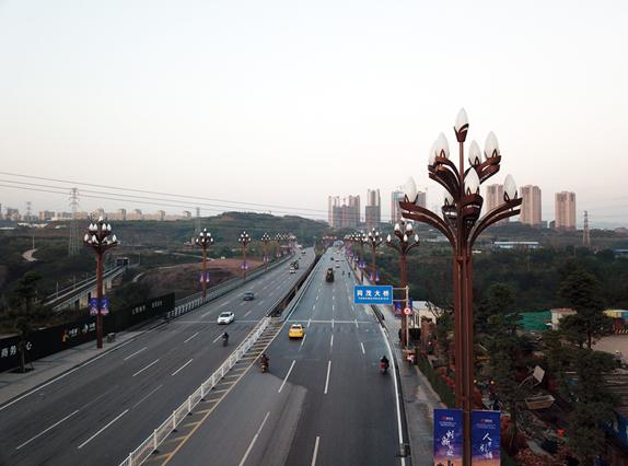 """""""玉兰""""绽放重庆两江新区"""