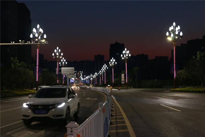 012 重庆渝北区-玉兰灯2