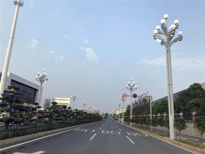 013 湖南益阳-芙蓉灯